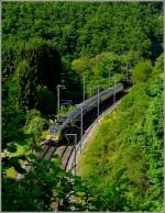 The IR 119 Liers - Luxembourg City will soon arrive in Kautenbach on May 24th, 2009.