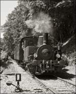 . The steam engine ADI N° 8 is arriving with heritage waggons in Fond de Gras on June 2nd, 2013.