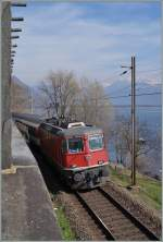The SBB Re 4/4 II 11139 wiht his IR 2169 from Basel to Locaro by Muralto.