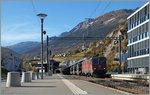 A SBB Re 4/4 II with a Cargo train in Leuk.