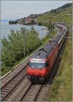 SBB Re 460 061-5 with an IR to Birg by St Saphorin.