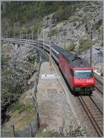 The SBB Re 460 024-3 with an IC near Hohtenn.