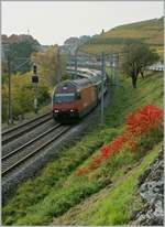 The SBB Re 460 092-1 with an IR by Rivaz.