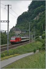 A SBB Re 460 with his IR 90 on the way to Brig by St-Maurice.