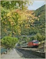 SBB Re 460 090-4 with an IR to Brig by Villeneuve. 