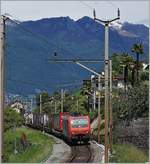 The SBB Re 474 014 with a Cargo train to Luino by San Nazarro.