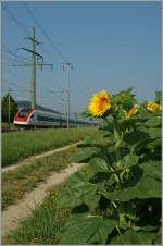 ICN 1612 from Basel SBB to Lausanne by Pieterlen.