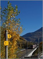 Walking way and Railway by Leuk wiht an SBB CFF TMR Dominoon the way to Sion.