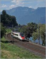 The SBB RABe 503 014-7 (UIC 93 85 1503 014-7 CH-SBB) near Villeneuve.