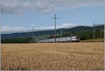 Summer on the Lausanne - Geneve line: A RABDe 511 near Perroy.