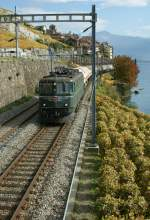 Ae 6/6 with a cargo train in the Wine yards on the Lake of Geneva  20.10.2008