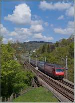 The SBB Re 460 007-8 with the IC 725 to St Gallen between Bossière and Grandvaux.