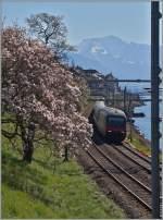 Early spring impressions in the Lavaux Area: Re 460 with IR by Rivaz.