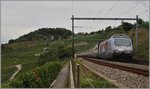 The SBBV Re 460  Welcom to Japan  by Grandvaux.