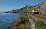 The SBB Re 460 083-9 with an IR to Brig between Rivaz andSt Saphorin.