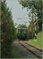 An old OJB Train on the Blonay - Chamby.