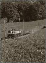 MOB'stalgie: The FZe 6/6 2002 with a Cargo Train is approaching Cornaux.
