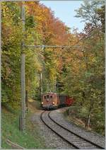 LA DER 2020 by the Blonay-Chamby: The BOB HGe 3/3 29 on the way to Blonay in the wood near Chantemele. 