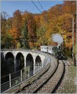 LA DER 2020 by the Blonay-Chamby: The ex LEB G 3/3 N° 5 now by the Blonay-Chamby Railway on the Baye de Clarens Viaduct. 