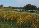 A BAM local train near Vufflens le Chateau.