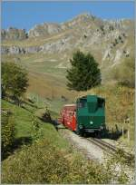 On an beautiful day i pictured the Brienzer Rothorn Bahn train by the Planalp.