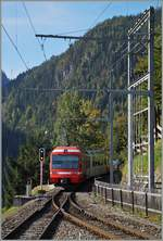 A M-C local train is leaving Trient on the way to Châtelard.