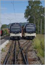 CEV MVR SURF ABeh 2/6 7502 and 7501 in Blonay.