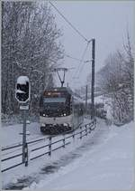 By a snowstorm runs the CEV ABeh 2/6 7501 by Blonay from Vevey to the Les Pleiades. 25.01.2021