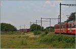 NStCM local trains by Trelex. 