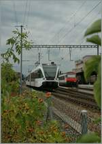 A Thurbo GTW in Romanshorn.