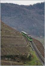 A AL local train in the vineyards over Aigle.