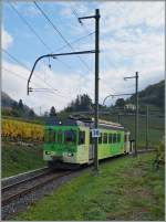 The ASD BDe 4/4 402 as local train 425 Les Diablertes - Aigle in Aigle's Vineyards.