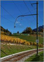 The ASD BDe 4/4 401 wiht his Bt on the way to Les Diablerets in the vineyard over Aigle. 