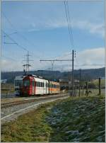 A TPF local train is leaving Bossennens.