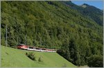 A ZB De 110 with a GoldenPass IR from Luzern to Interlaken near Oberried.