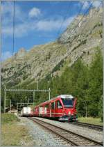 A RhB  Allegra  with his Albula fast train to St.Moritz is crossing a Cargo-train n the Spinas Station.